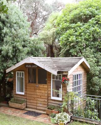 cabin warm